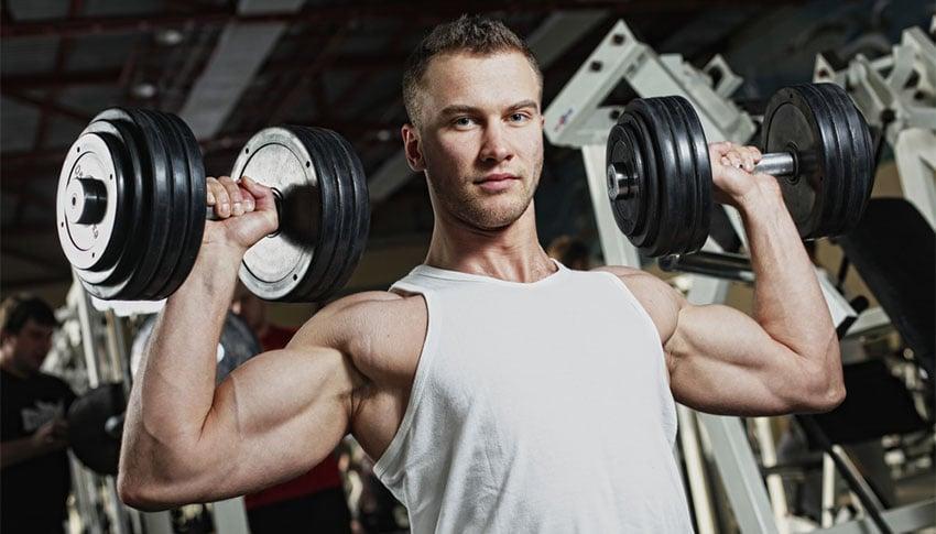 mięśnie białko