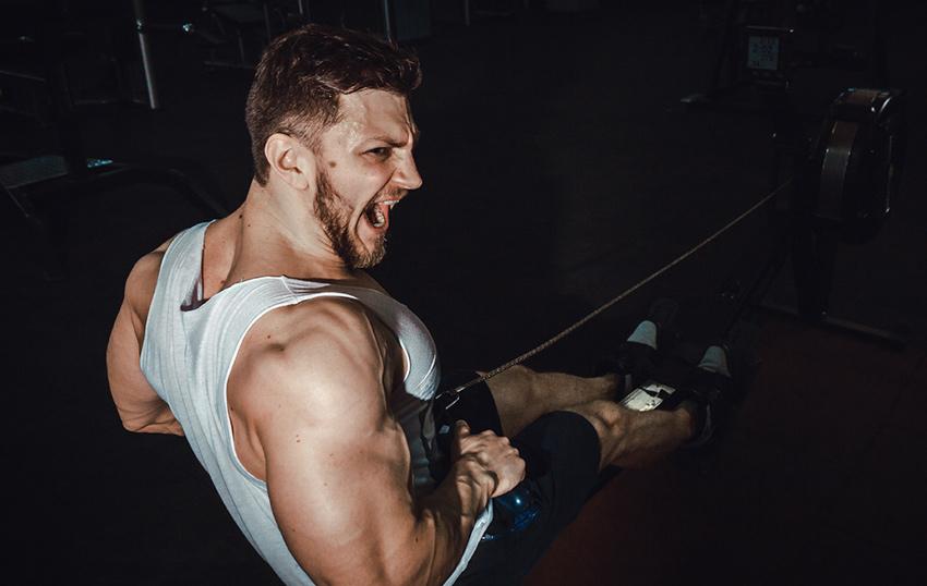 trening mięśnie
