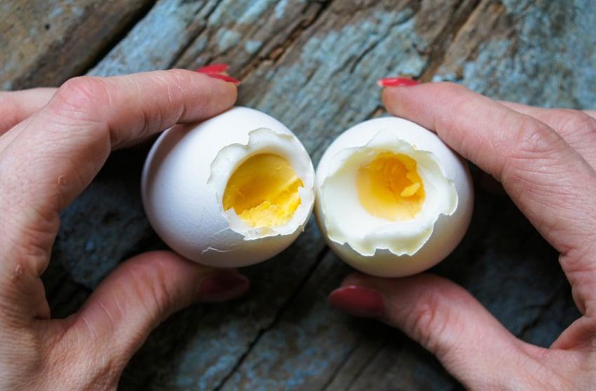 żóltka jaj