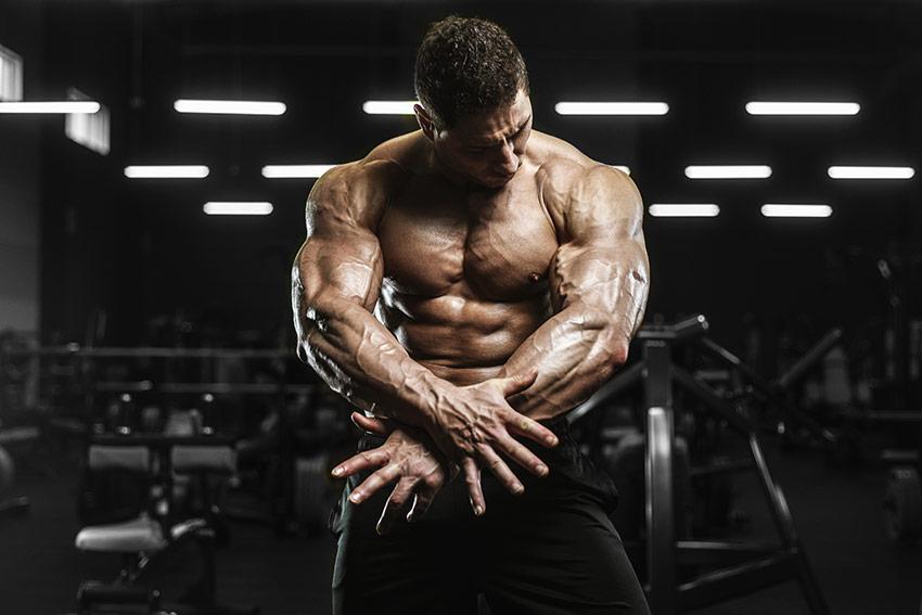 włókna mięśniowe