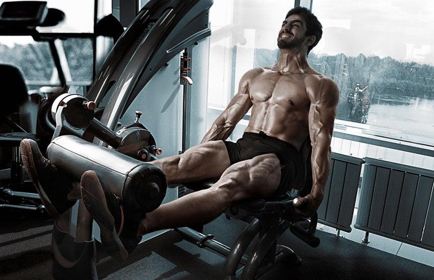 bicepsy nogi