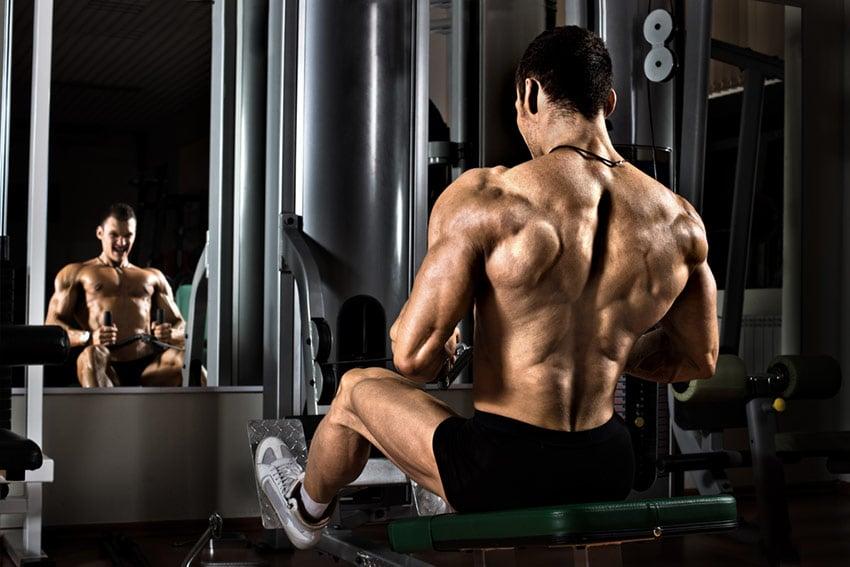 węglowodany mięśnie