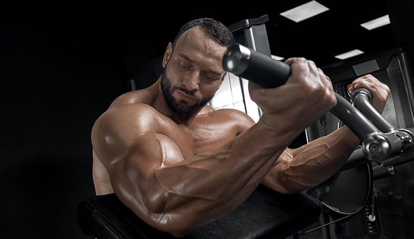 glutamina rozwój mięśni