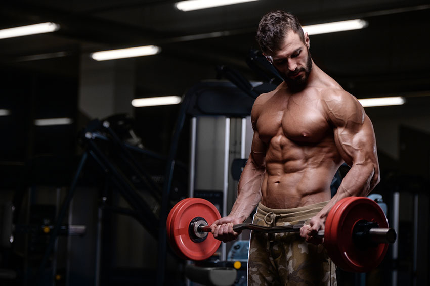 trening bicepsów fbw