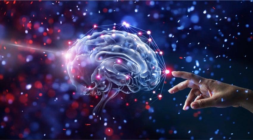 praca mózgu suplementy