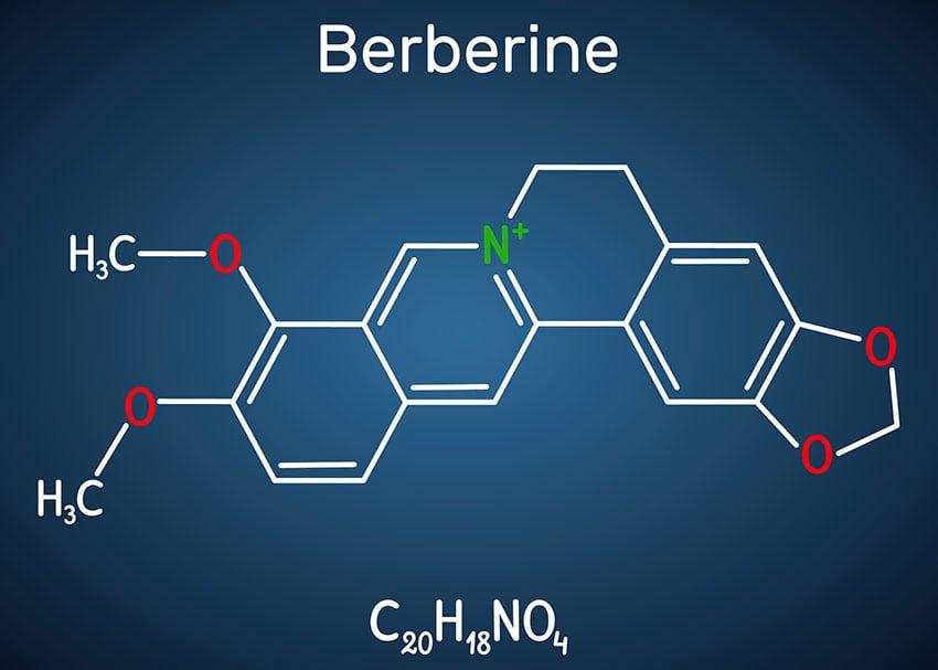 berberyna
