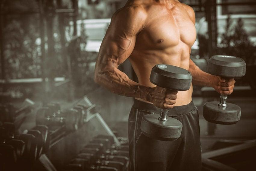 kortyzol mięśnie