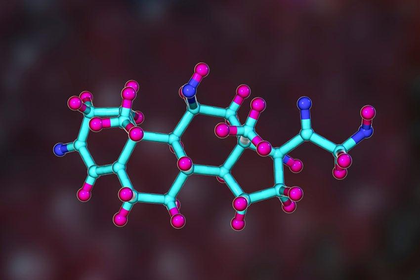 kortyzol co to jest