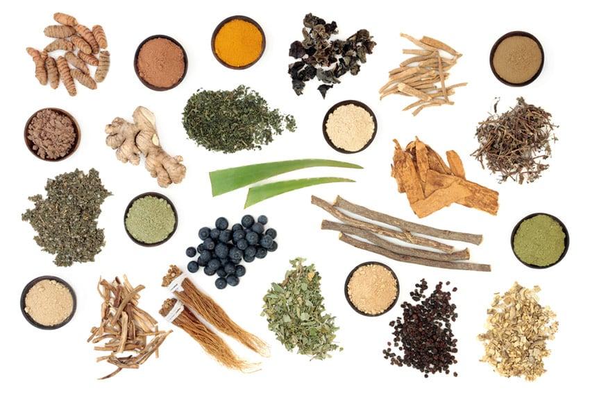 adaptogeny zioła
