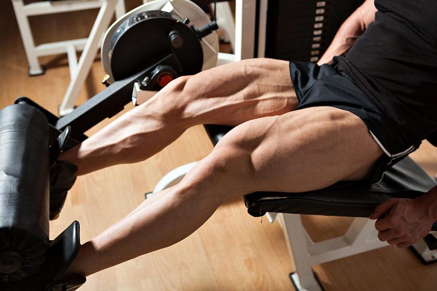 ćwiczenia nóg izolowane