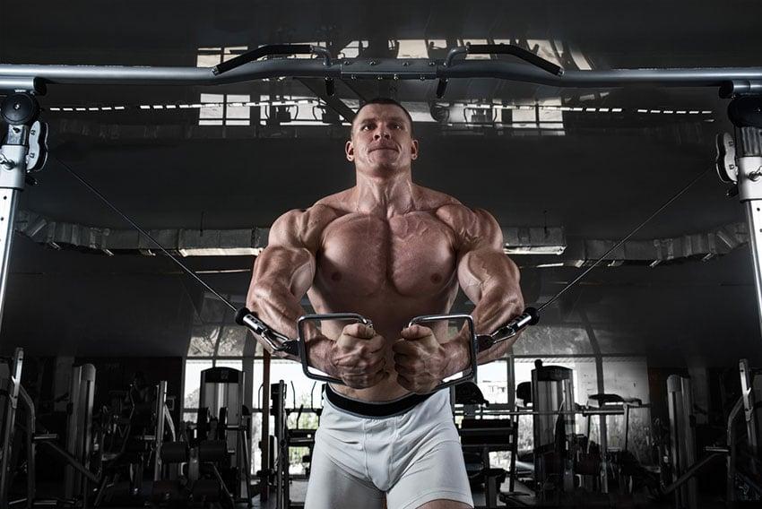wzrost mięśni