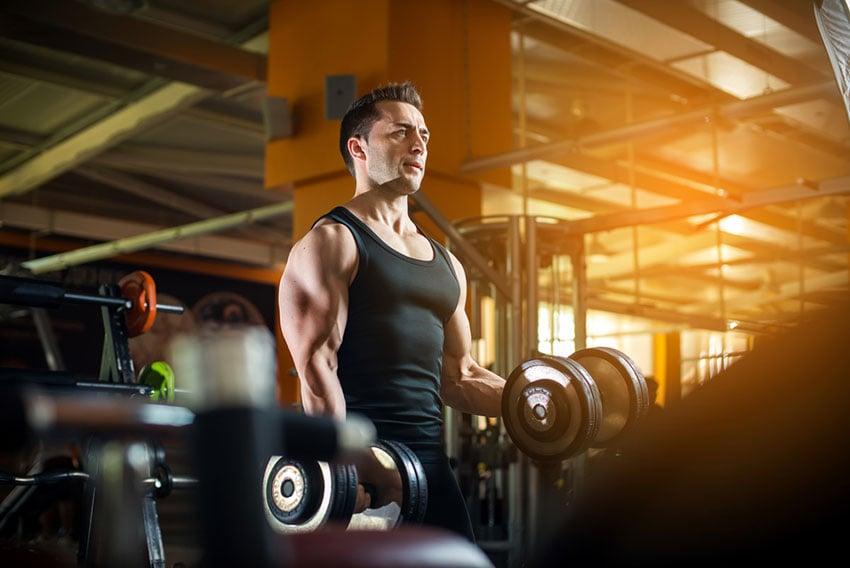 plan treningowy siłownia