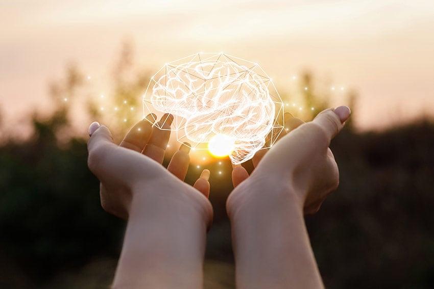 witamina d mózg układ nerwowy