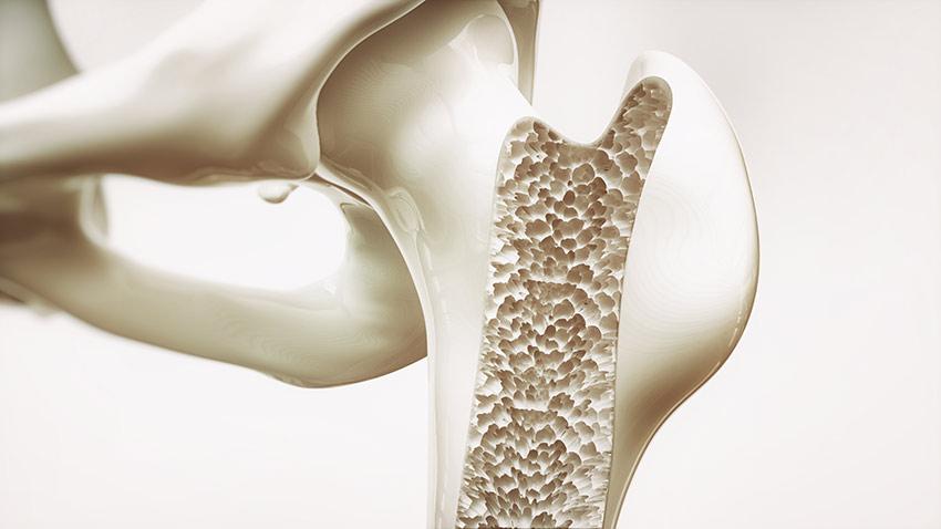 kości wapń
