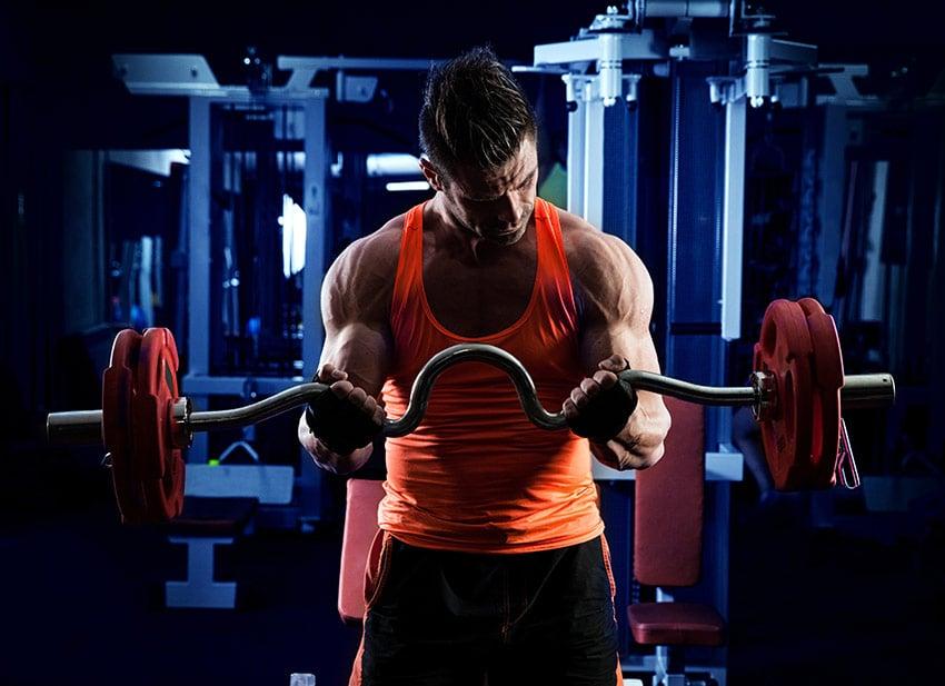 mięśnie trening