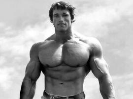 Arnold Schwarzenegger trenuje jak zwierzę!
