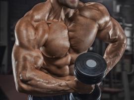Masa mięśniowa - norma. Analiza składu ciała