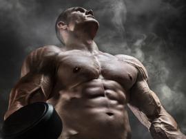 Masa mięśniowa - budowanie muskulatury