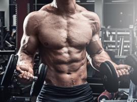 Dlaczego Twoje naczynia krwionośne uwielbiają trening siłowy?