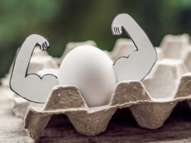 Dzikie jaja – już sama nazwa powinna Was zaciekawi