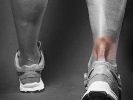 Kolagen a regeneracja ścięgna Achillesa