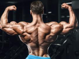 Tylna część mięśnia naramiennego jest bardzo ważny