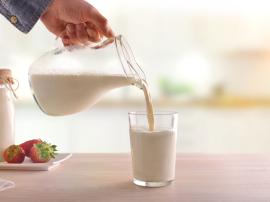 Mleko i produkty mleczne (np. jogurty, sery żółte,