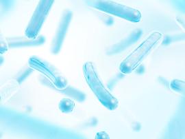 Czy probiotyki działają? Kiedy warto stosować probiotyk?