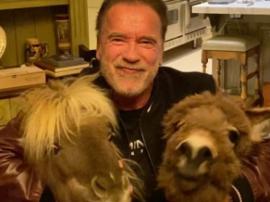 Arnold Schwarzenegger przekazał  milion dolarów na walkę z koronawirusem!