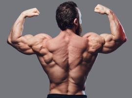 Barki są jedną z partii mięśniowych, które podkreś