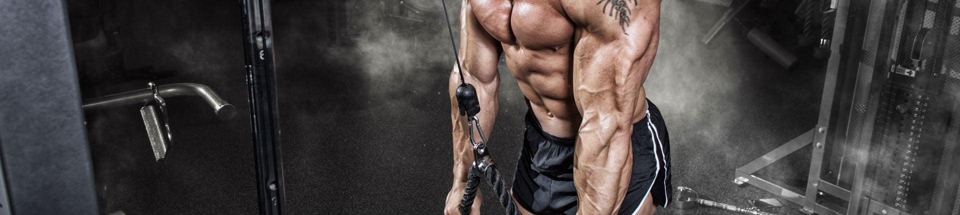 Technika ćwiczeń - uwarunkowania anatomiczne