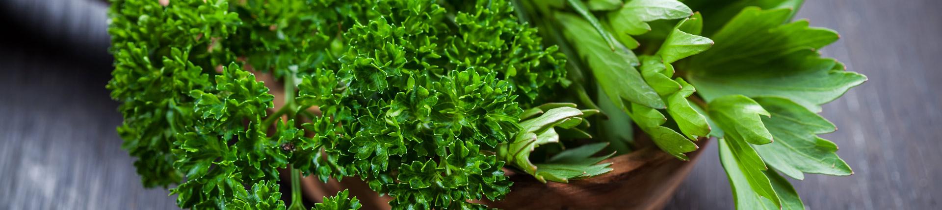 Zielone dodatki w diecie - czy warte uwagi?