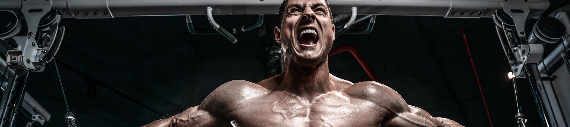 Jak rosną mięśnie?