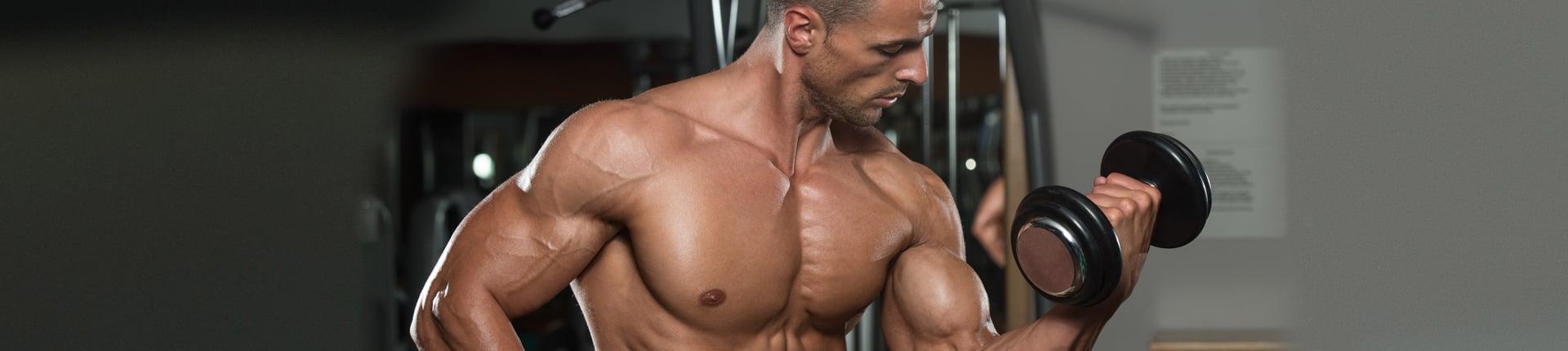 Znajomość funkcji mięśnia - sposobem na nowy bodziec treningowy