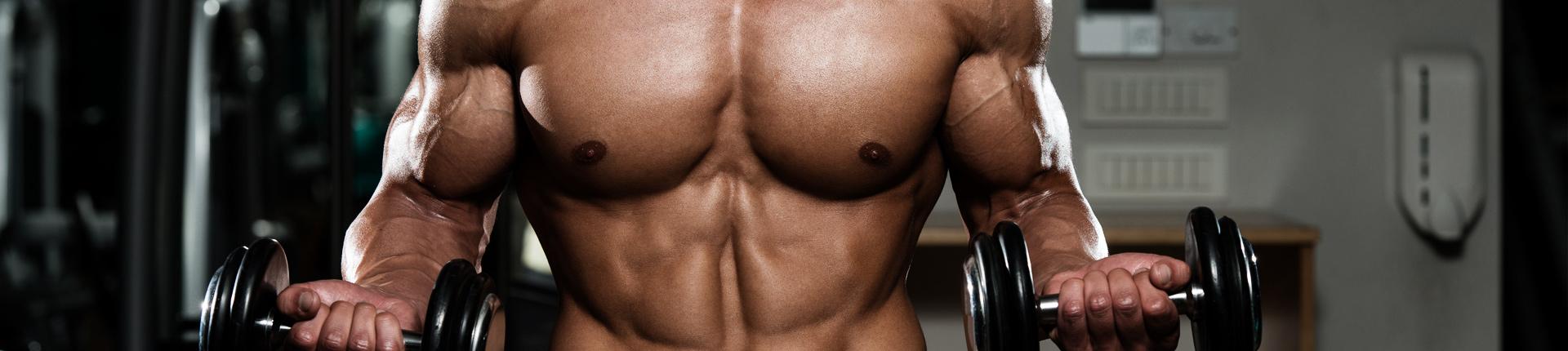 Biceps 6 razy w tygodniu – czyli metody progresji treningowej