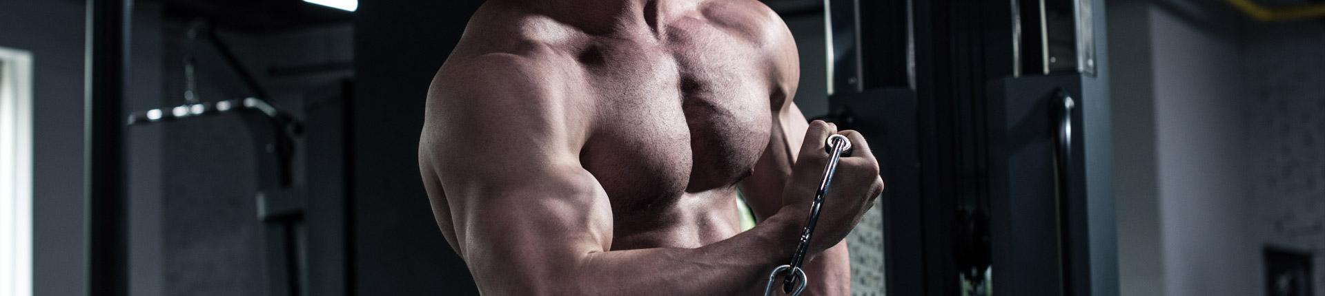 Kolejność wykonywania ćwiczeń a rozwój mięśni