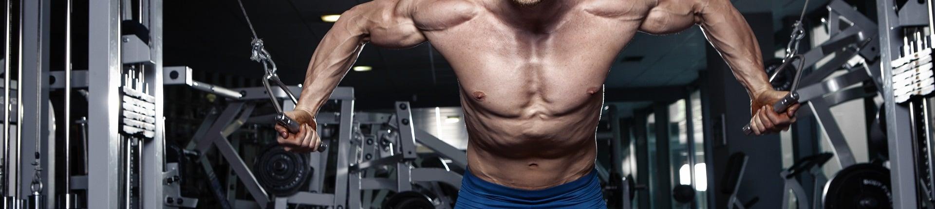 Progresja treningowa  - klucz do rozwoju muskulatury