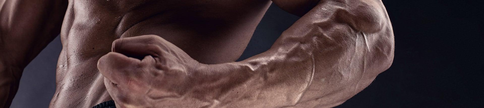 Różeniec górski - naturalny doping krwi