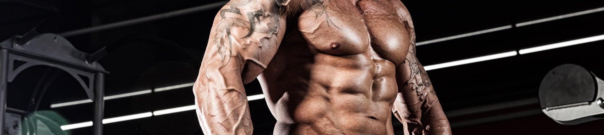 Naczynia krwionośne, a trening siłowy