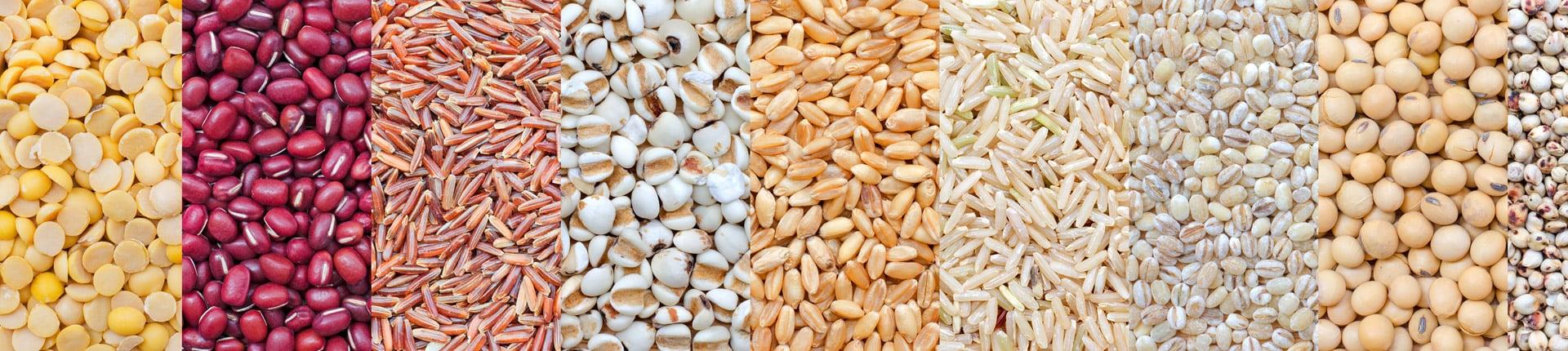 Pełne ziarna – zdrowe czy niezdrowe?