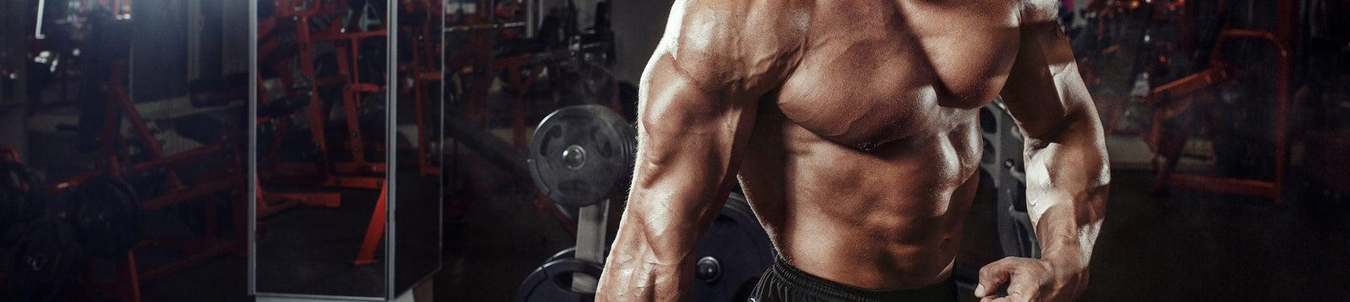 Pięć mięśni, które często ignorujemy trenując na siłowni