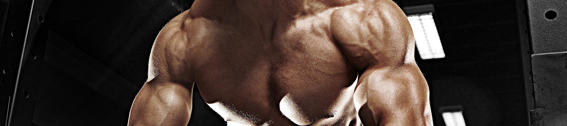 Leucyna redukuje tłuszcz i chroni mięśnie