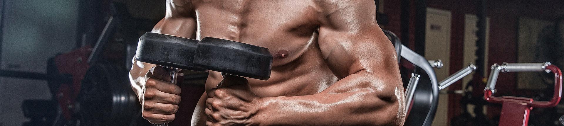 Główne czynniki wyzwalające syntezę białek mięśniowych