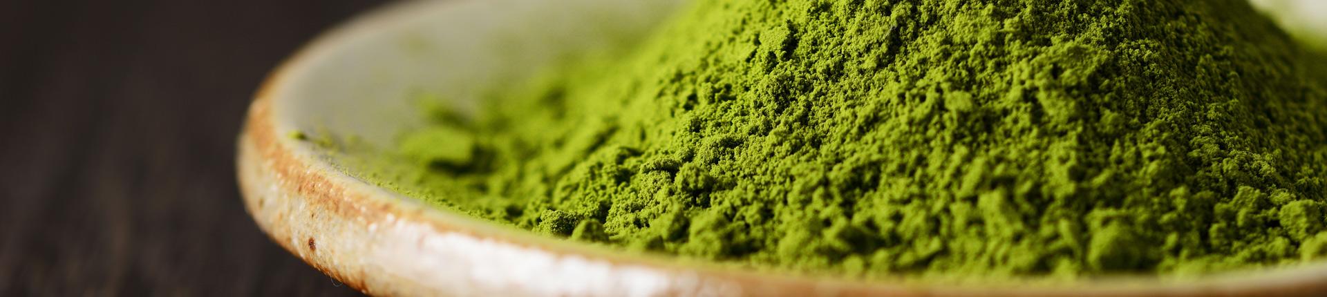 Green Tea ALLNUTRITION - Właściwości i zastosowanie zielonej herbaty