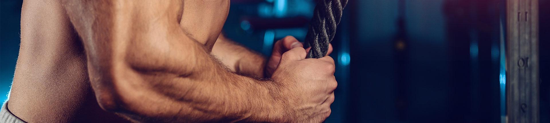 Adaptacja treningowa, co powinieneś wiedzieć?