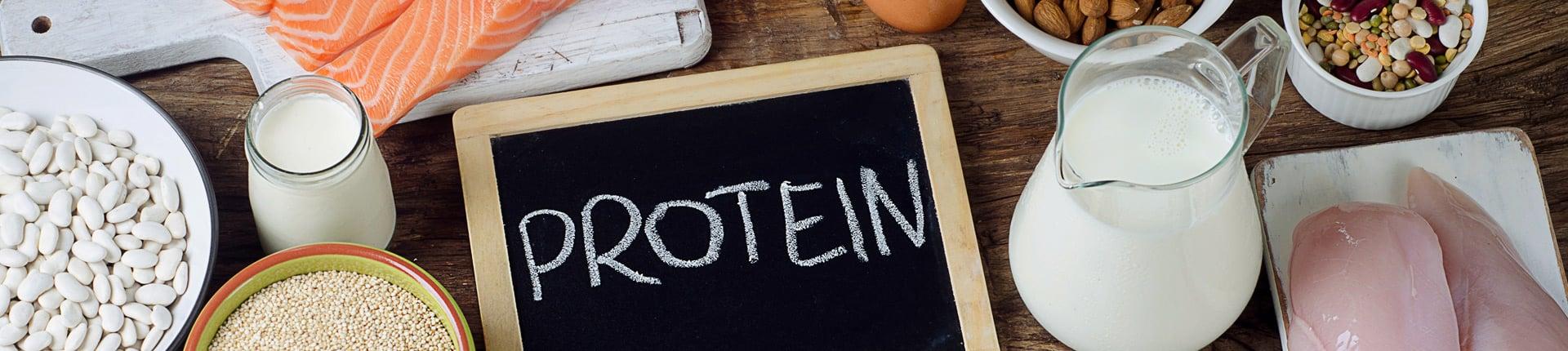 Białko i odżywki białkowe - kompendium wiedzy