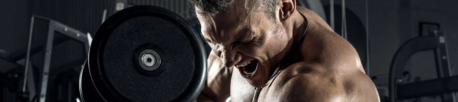 Trening FBW, Full Body Workout - hit czy kit?