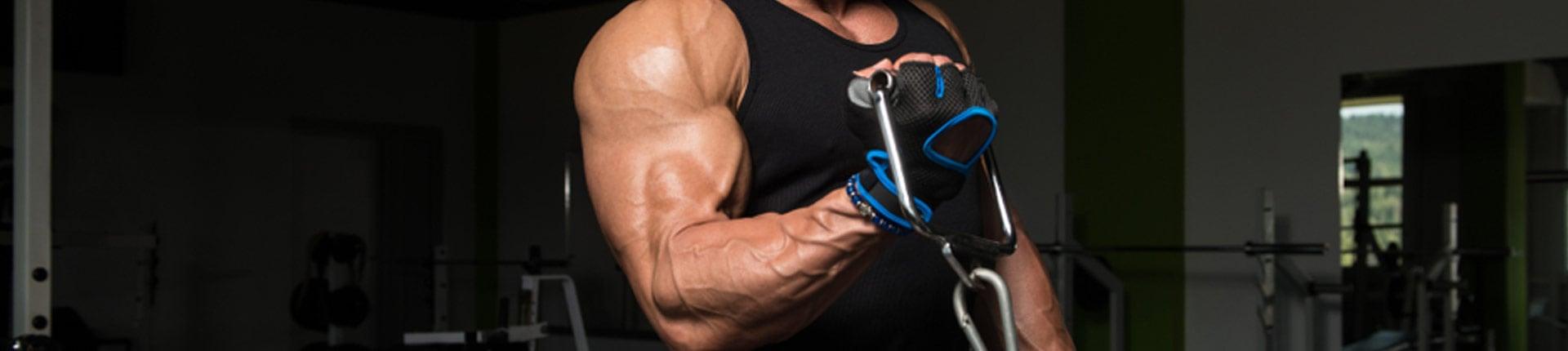 Jak trenować bicepsy na maszynach i wyciągach? Najlepsze maszyny na biceps!