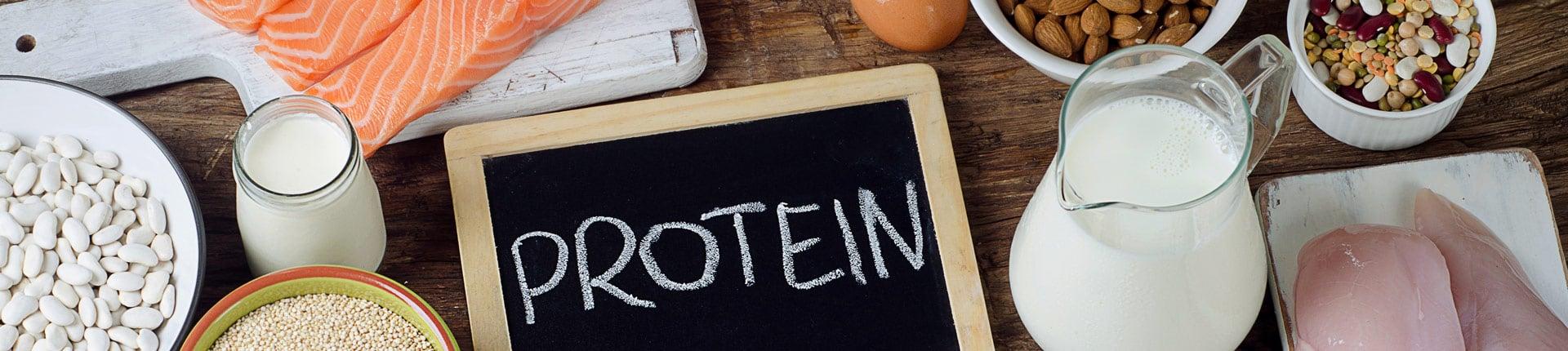 Białko, ile razy dziennie? Czy muszę jeść białko co 3h?