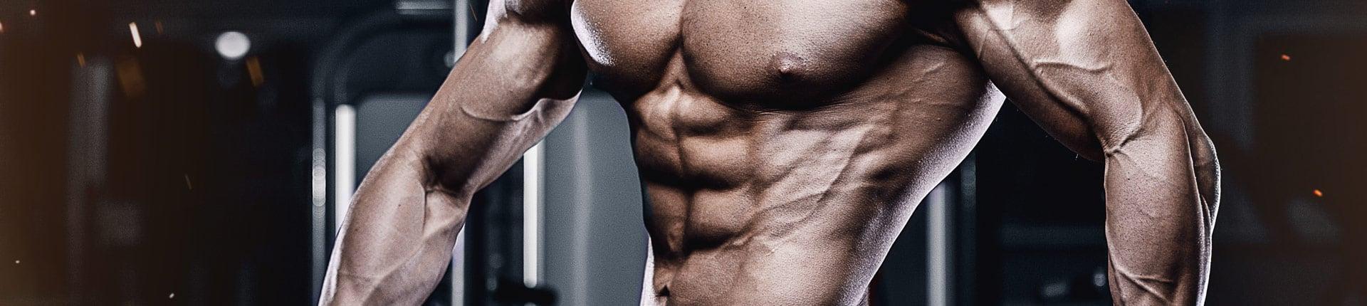 Mięśnie zębate, jak je trenować?